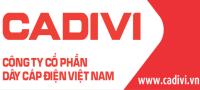 dailycadivi.com